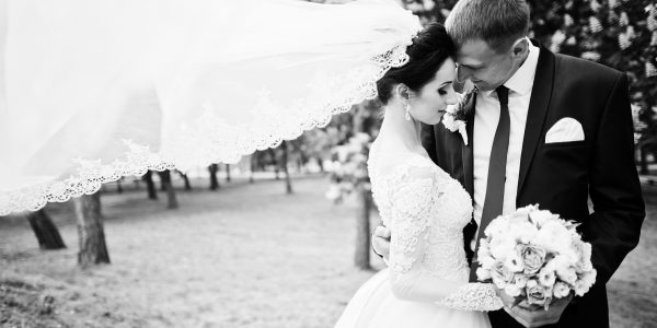 Fabulous wedding couple hugging in the park. Bridal veil. Black and white photo.